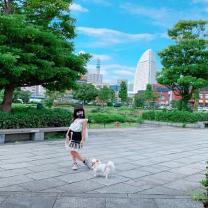 6歳娘と♡横浜でちょっとリッチに過ごす1dayトリップwithチワワ