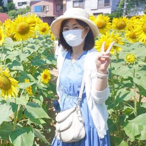 夏休みにいきたい!横浜子連れひまわり畑