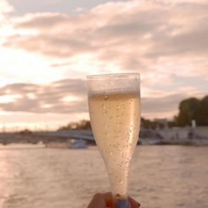 セーヌ川クルーズで水上観光を楽しむ!クルーズ会社徹底ガイド