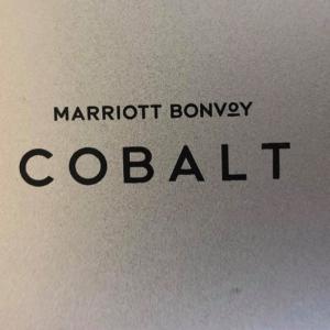 マリオットにはアンバサダーより上の隠し最上級ステータス「コバルトエリート」が存在する!