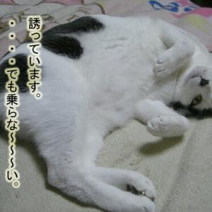 (356)ママのベッド