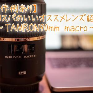 【作例あり】コスパのいいオススメレンズ紹介〜 TAMRON90mmマクロレンズ〜