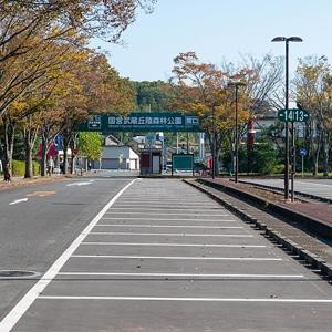 秋のお散歩 国営武蔵丘陵森林公園