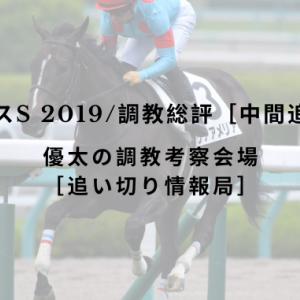【アルテミスS 2019/調教総評[中間追い切り]】