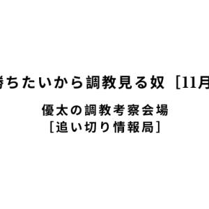 【新馬戦で勝ちたいから調教見る奴[11月9日(土)]】