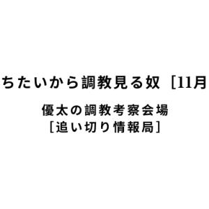 【新馬戦で勝ちたいから調教見る奴[11月10日(日)]】