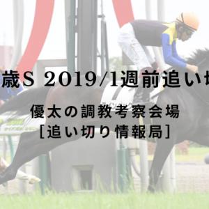 【東スポ2歳S 2019/1週前追い切り評価】