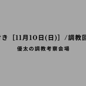 【調教の気付き[11月10日(日)]/調教回顧その60】