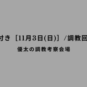 【調教の気付き[11月3日(日)]/調教回顧その58】