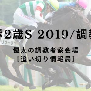 【東スポ2歳S 2019/調教考察】