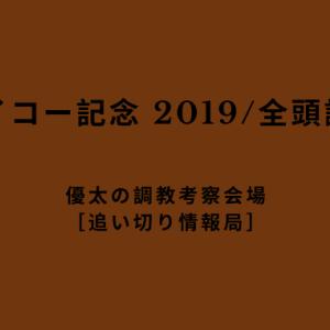 【ハイセイコー記念 2019/全頭調教考察】