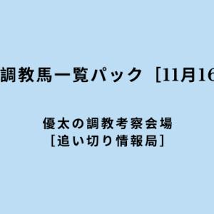 【平場の好調教馬一覧パック[11月16日(土)]】