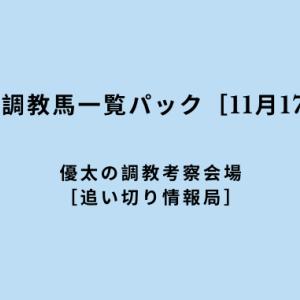 【平場の好調教馬一覧パック[11月17日(日)]】