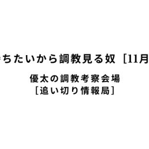 【新馬戦で勝ちたいから調教見る奴[11月17日(日)]】