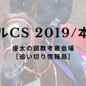 【マイルCS 2019/本命馬】