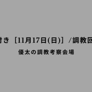 【調教の気付き[11月17日(日)]/調教回顧その62】