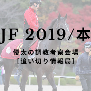 【阪神JF 2019/本命馬】