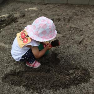 【1歳児】保育園生活17週目。「おしまいよ」