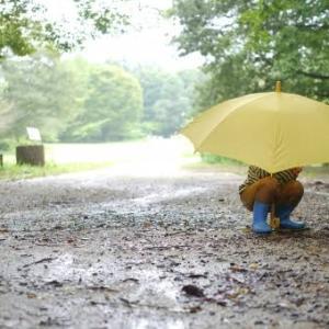 6月テーマは【ことば】…ということで、日本の「雨」を集めて遊んでみました!!