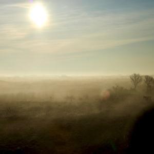霧が出た時の写真
