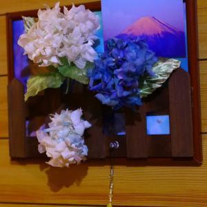 6月の代表名詞紫陽花