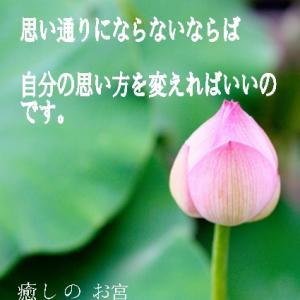 瑚都さん魂の日めくりです。(*´꒳`*)