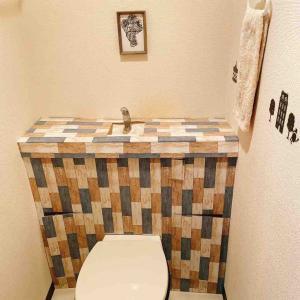 前からやってみたかったプラダンを使ったトイレのDIYをこのゴールデンウィークを使ってやってみました