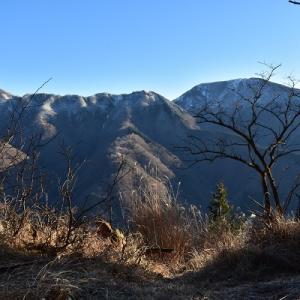 雪の丹沢主脈へ #2