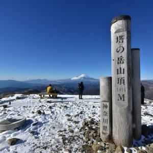 雪の塔ノ岳山頂より #1