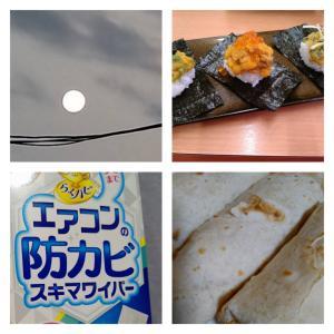 記録728.ビーム(ノ・ω-)☆*+*+:*+:*…━☆((≪ヂュドーン!!!≫))(ノ゚