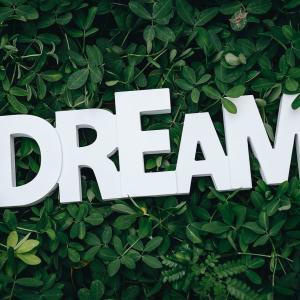 「夢オチ、夢が舞台、夢の住人」系作品特集
