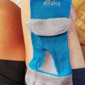 ソックス 比較 gleg socks