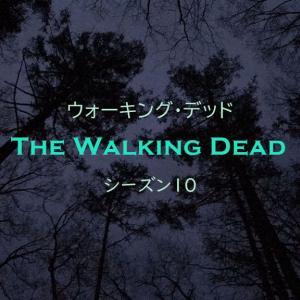 ウォーキング・デッド シーズン10 第6話 秘密の任務 -感想- ニーガン最強!!