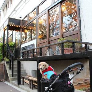 中目黒で犬と一緒に室内で食事できるレストラン~HUIT(ユイット)~