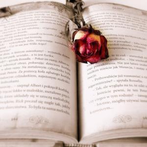 お金に変える本の読み方