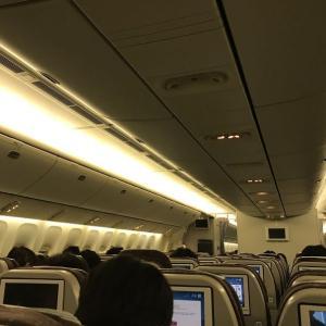 飛行機で缶詰
