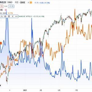 グローバルな生活のために、安全・安心な投資、注意するのは「ヒンデンブルグオーメン」とVIX(恐怖)、SKEW (ブラックスワン)