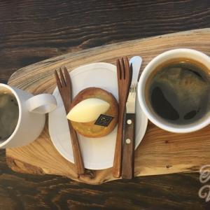 コーヒーは健康にいい!カフェイン、ポリフェノール、トリゴネリンの効果・効能