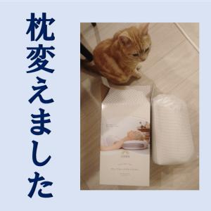 GOKUMIN 低反発枕 ハイブリッド枕を試してみた★久しぶりに枕を変えてみた!