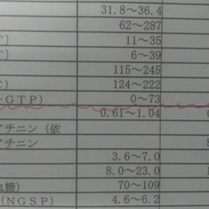 γGTP300ってあまり良くない値ですよね?