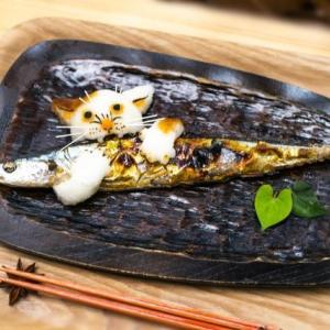 サンマ・鰹のたたき、お魚特集!