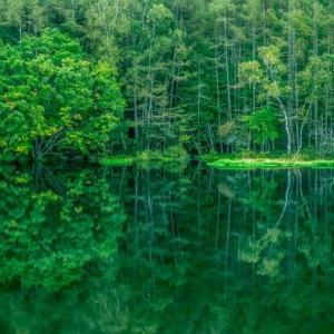 【カメラマン】長野県の「御射鹿池」の時間帯や天気の見え方の違い
