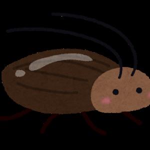 閲覧注意!!ゴキブリを愛しすぎたアメリカ人の女の子