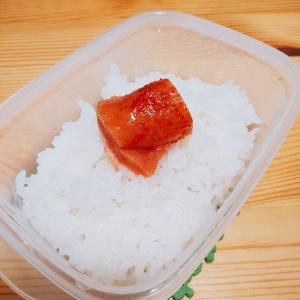 2020/09/21 今日の夕食