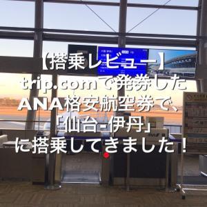 trip.comで発券したANA格安航空券で搭乗してきました!【搭乗レビュー】