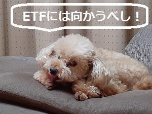 【株式投資】ダウの下落は無視してハイテク株に集中!ETF分配金捻出の売りに怯える必要なし!