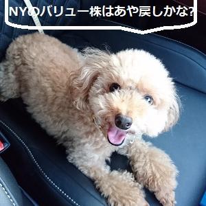 【株式投資】NYのバリュー上昇も一過性、ただ、本日の東京はハイテクには厳しいかと