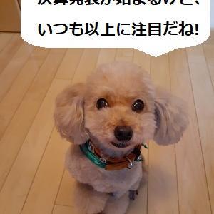【株式投資】ワクチン期待でNYは続伸、東京ではETFレバ信用売り禁止に