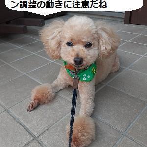 【株式投資】週末のNYは区々の動きもバリュー挽回は小休止の兆し、東京は連休前で動きは鈍そう