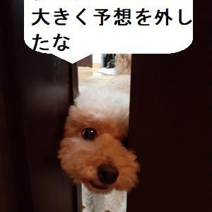 【あさイチの株の素】東京は意外高の8月となっているが、国内勢は参加出来ておらず